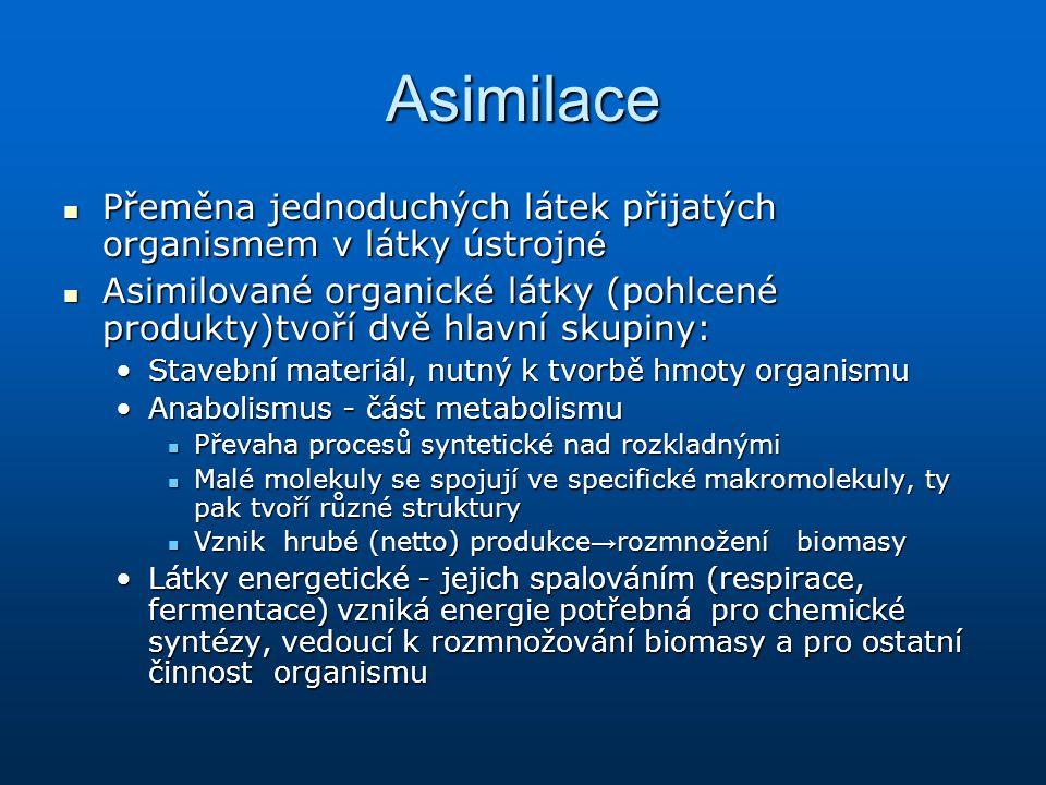 Asimilace Přeměna jednoduchých látek přijatých organismem v látky ústrojn é Přeměna jednoduchých látek přijatých organismem v látky ústrojn é Asimilov