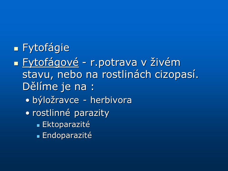 Fytofágie Fytofágie Fytofágové - r.potrava v živém stavu, nebo na rostlinách cizopasí. Dělíme je na : Fytofágové - r.potrava v živém stavu, nebo na ro