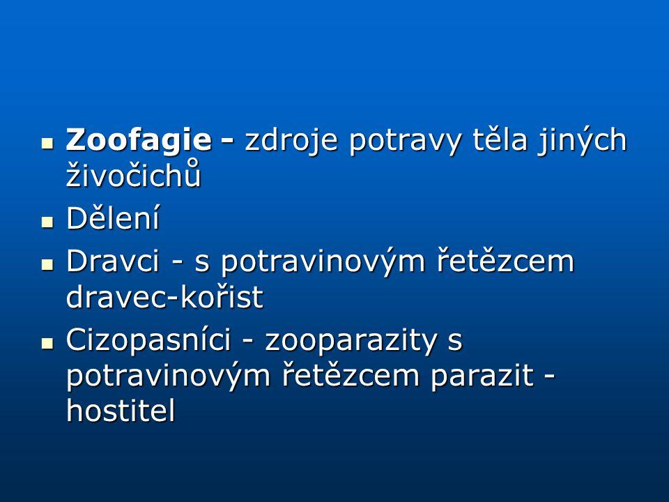 Zoofagie - zdroje potravy těla jiných živočichů Zoofagie - zdroje potravy těla jiných živočichů Dělení Dělení Dravci - s potravinovým řetězcem dravec-