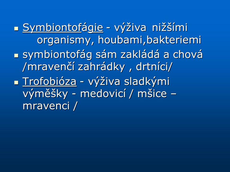 Symbiontofágie- výživanižšími organismy, houbami,bakteriemi Symbiontofágie- výživanižšími organismy, houbami,bakteriemi symbiontofág sám zakládá a cho