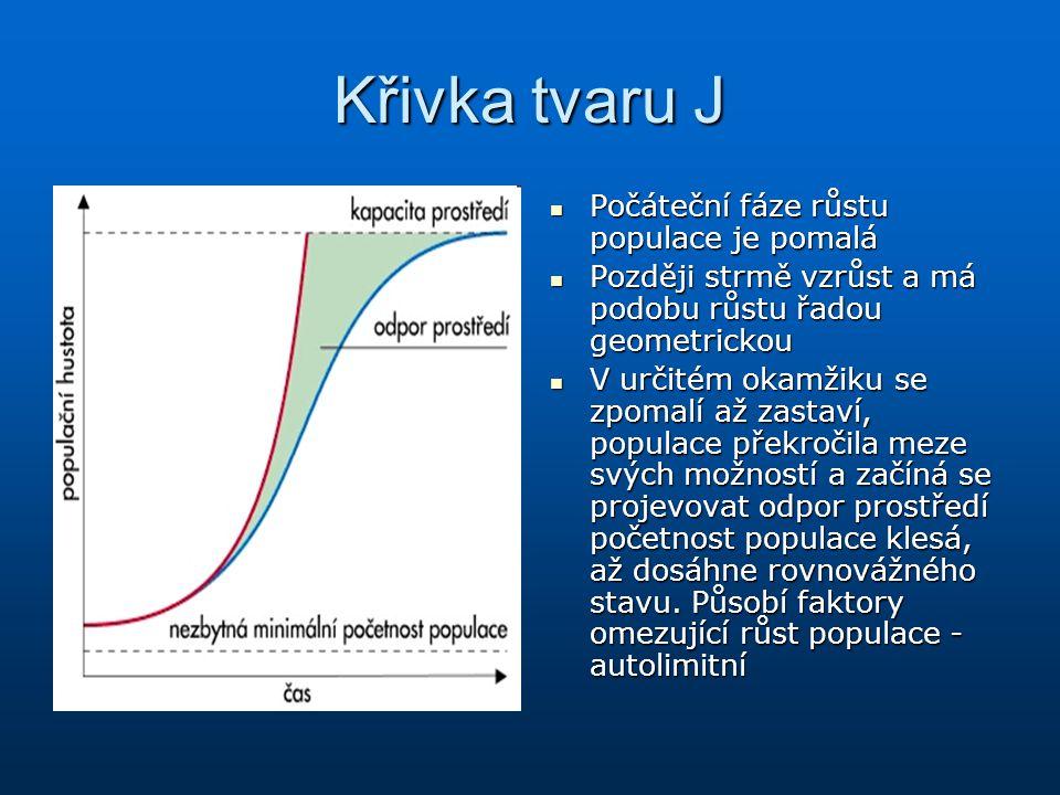 Křivka tvaru J Počáteční fáze růstu populace je pomalá Počáteční fáze růstu populace je pomalá Později strmě vzrůst a má podobu růstu řadou geometrick