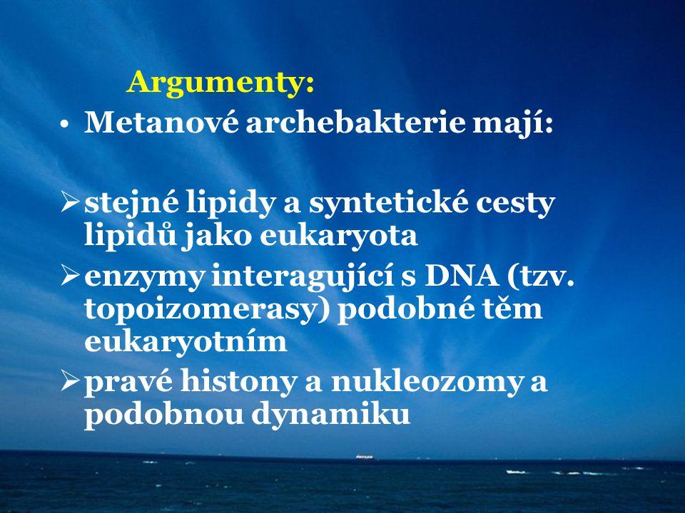 Argumenty: Metanové archebakterie mají:  stejné lipidy a syntetické cesty lipidů jako eukaryota  enzymy interagující s DNA (tzv. topoizomerasy) podo