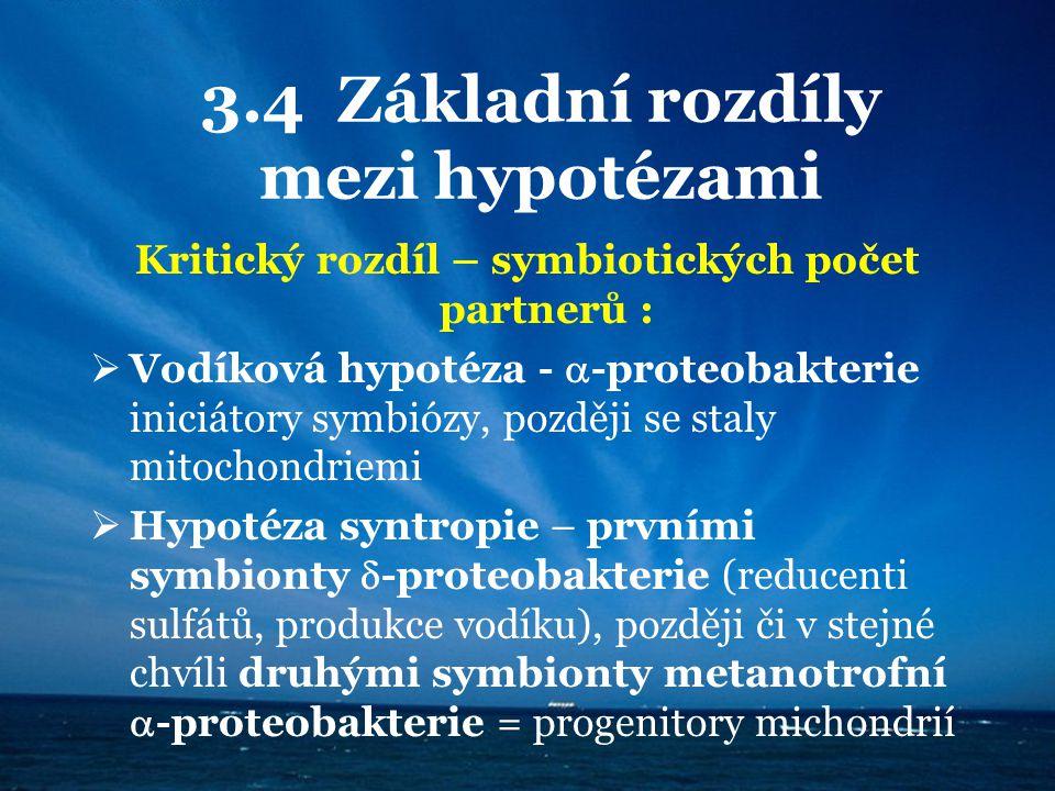 3.4 Základní rozdíly mezi hypotézami Kritický rozdíl – symbiotických počet partnerů :  Vodíková hypotéza -  -proteobakterie iniciátory symbiózy, poz