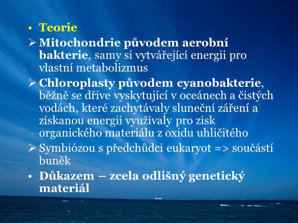 Teorie  Mitochondrie původem aerobní bakterie, samy si vytvářející energii pro vlastní metabolizmus  Chloroplasty původem cyanobakterie, běžně se dř