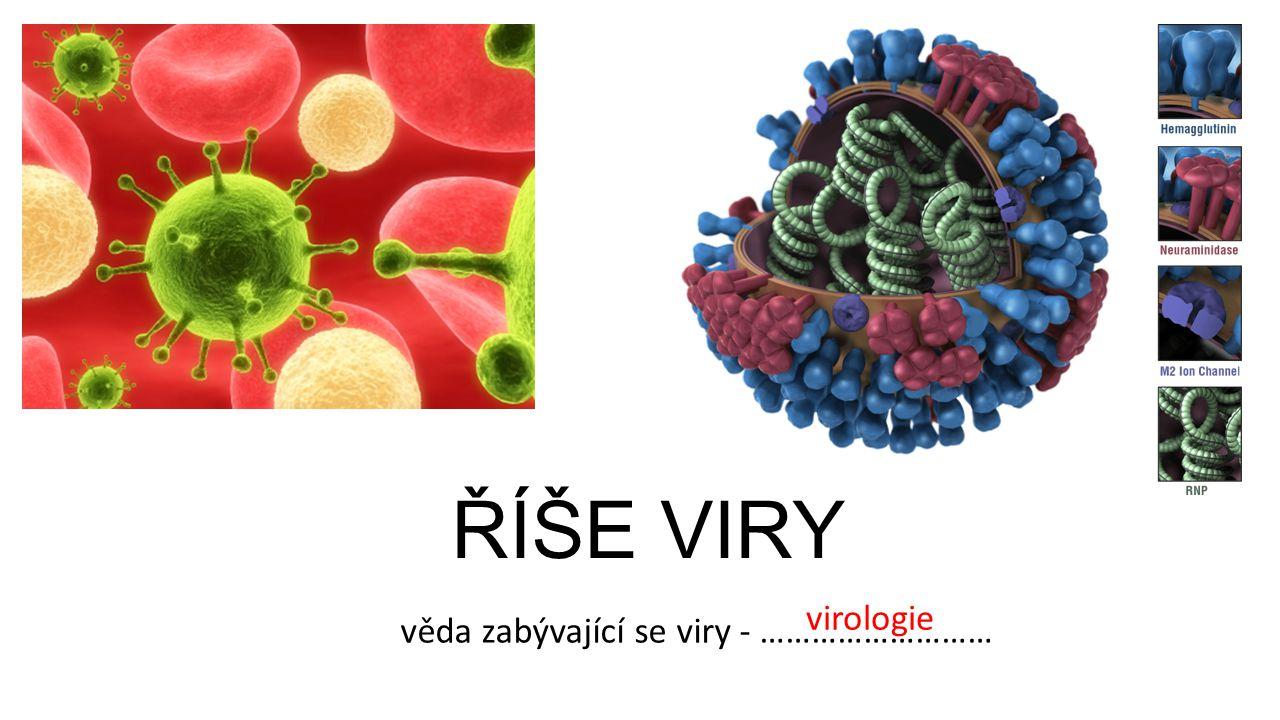 ŘÍŠE VIRY věda zabývající se viry - ……………………… virologie