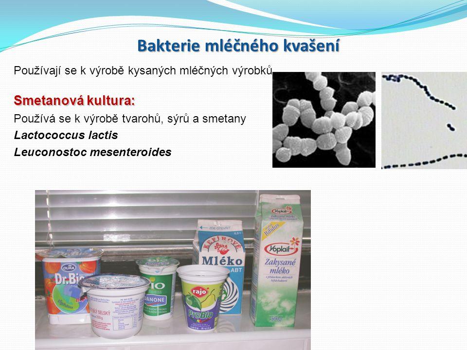 Bakterie mléčného kvašení Používají se k výrobě kysaných mléčných výrobků Smetanová kultura: Používá se k výrobě tvarohů, sýrů a smetany Lactococcus lactis Leuconostoc mesenteroides