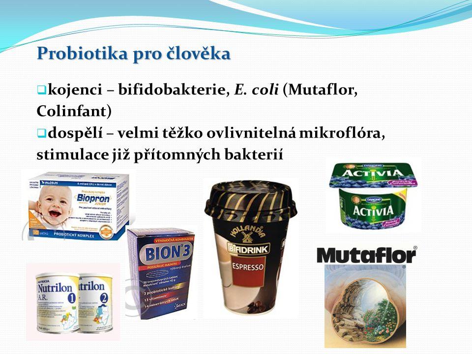 Probiotika pro člověka  kojenci – bifidobakterie, E.