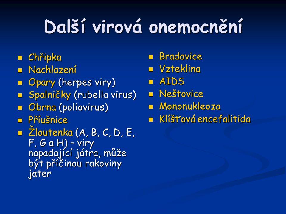 Další virová onemocnění Chřipka Chřipka Nachlazení Nachlazení Opary (herpes viry) Opary (herpes viry) Spalničky (rubella virus) Spalničky (rubella vir