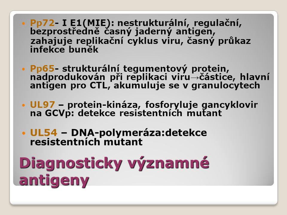 Diagnosticky významné antigeny Pp72- I E1(MIE): nestrukturální, regulační, bezprostředně časný jaderný antigen, zahajuje replikační cyklus viru, časný