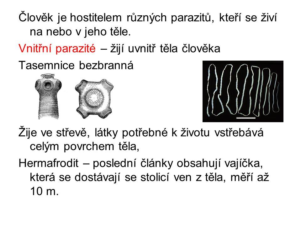 Člověk je hostitelem různých parazitů, kteří se živí na nebo v jeho těle.