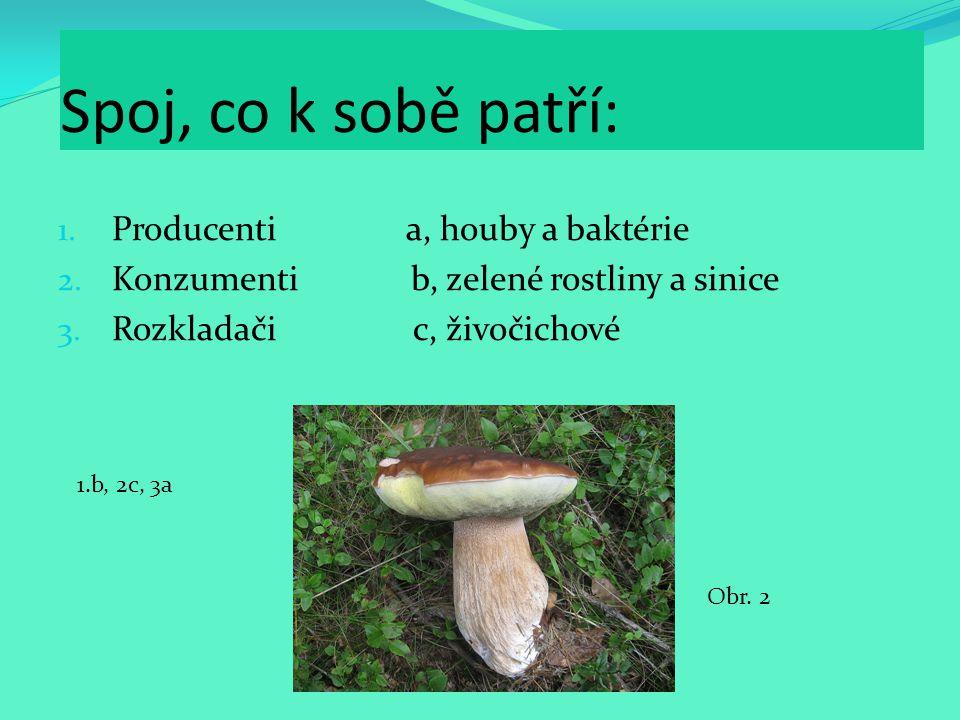 Spoj, co k sobě patří: 1. Producenti a, houby a baktérie 2. Konzumenti b, zelené rostliny a sinice 3. Rozkladači c, živočichové 1.b, 2c, 3a Obr. 2
