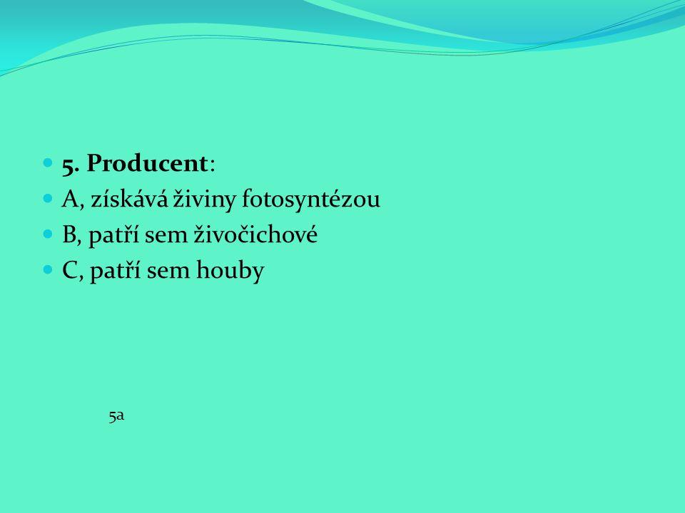 5. Producent: A, získává živiny fotosyntézou B, patří sem živočichové C, patří sem houby 5a