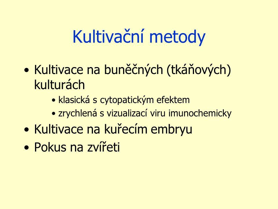 Kultivační metody Kultivace na buněčných (tkáňových) kulturách klasická s cytopatickým efektem zrychlená s vizualizací viru imunochemicky Kultivace na