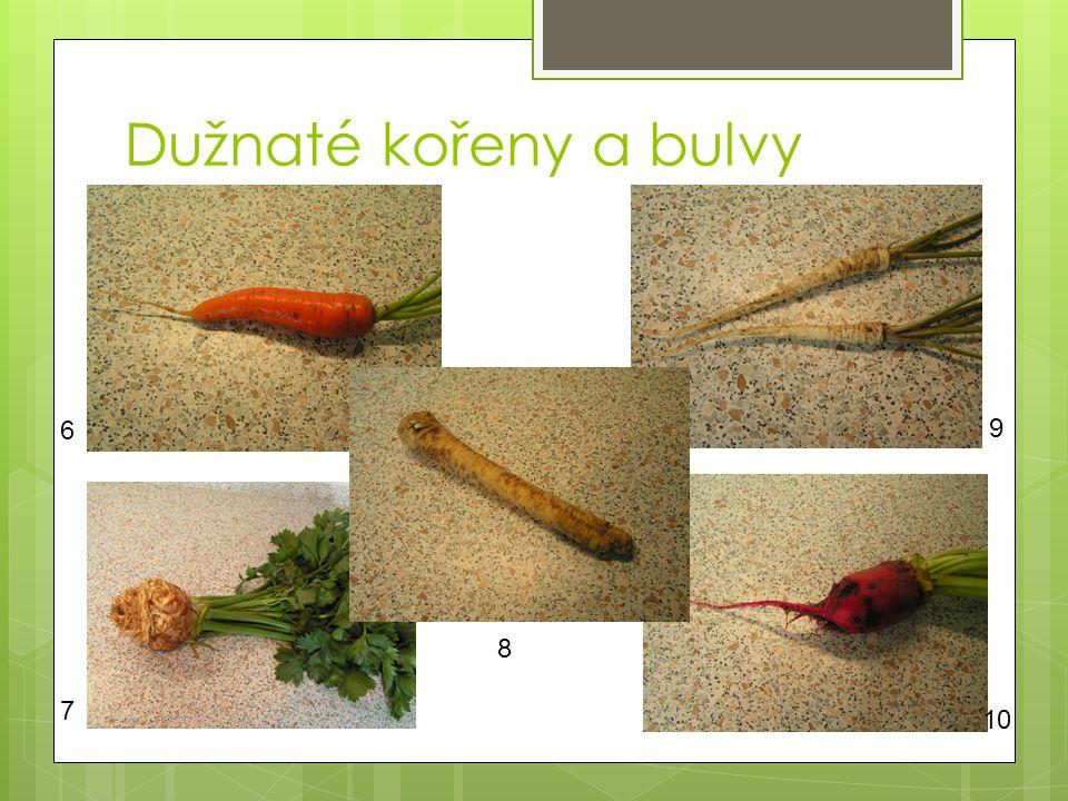 Dužnaté kořeny a bulvy 7 6 8 9 10