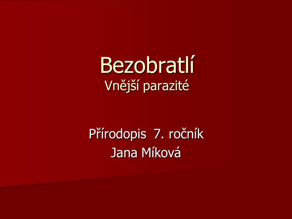 Bezobratlí Vnější parazité Přírodopis 7. ročník Jana Míková