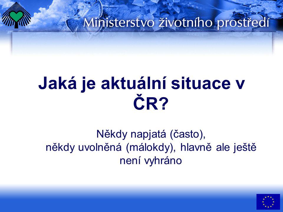 Jaká je aktuální situace v ČR.
