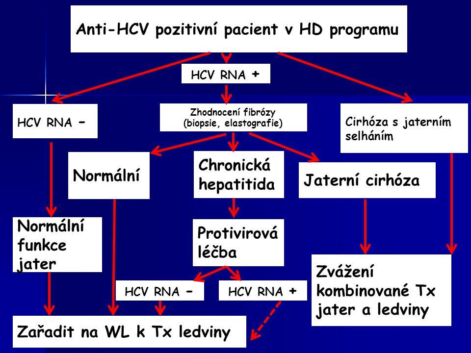 Anti-HCV pozitivní pacient v HD programu HCV RNA + Zhodnocení fibrózy (biopsie, elastografie) Normální Chronická hepatitida Jaterní cirhóza Zvážení ko