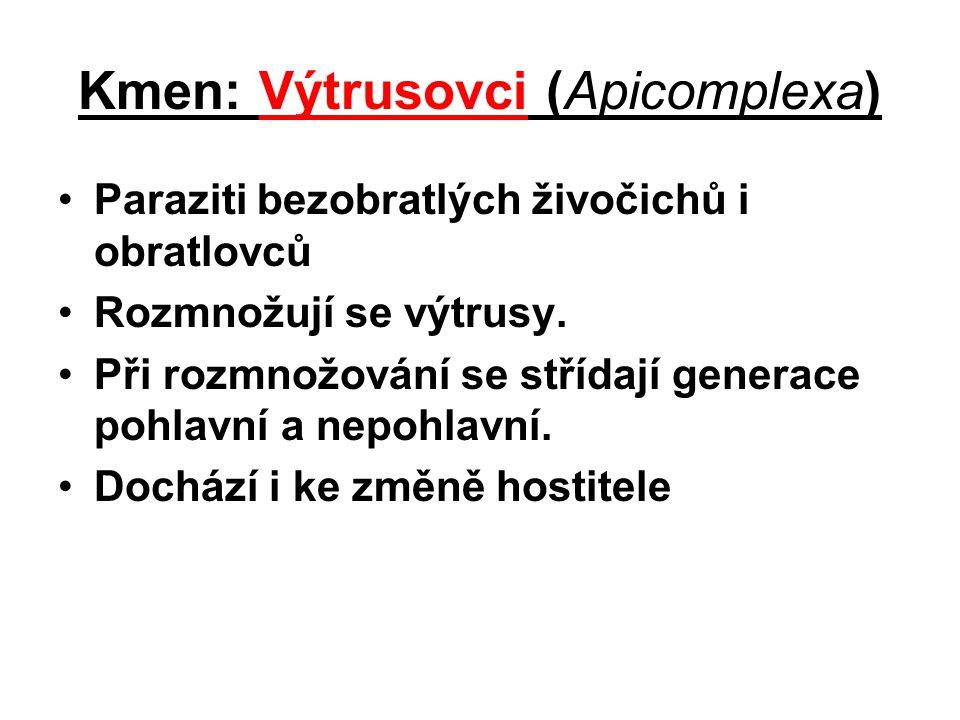 Kmen: Výtrusovci (Apicomplexa) Paraziti bezobratlých živočichů i obratlovců Rozmnožují se výtrusy. Při rozmnožování se střídají generace pohlavní a ne