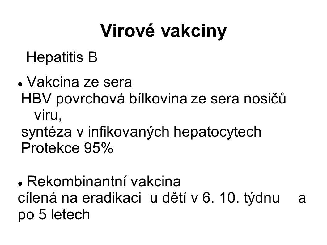 Virové vakciny Hepatitis B Vakcina ze sera HBV povrchová bílkovina ze sera nosičů viru, syntéza v infikovaných hepatocytech Protekce 95% Rekombinantní vakcina cílená na eradikaci u dětí v 6.