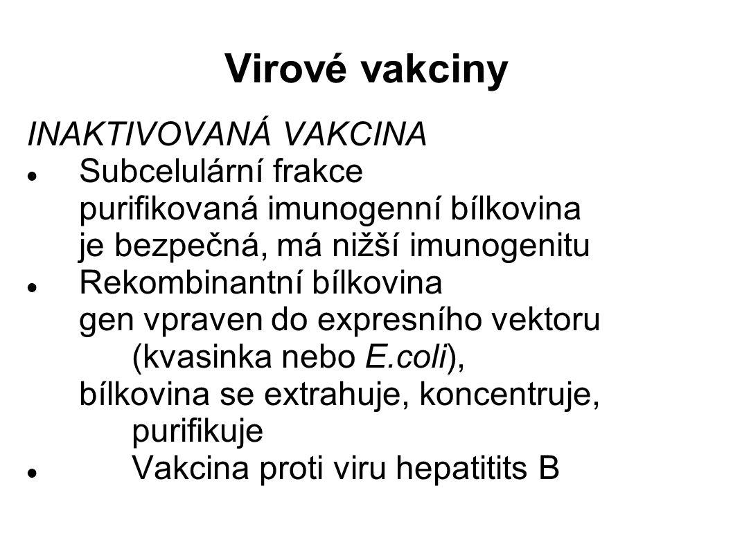 Virové vakciny INAKTIVOVANÁ VAKCINA Subcelulární frakce purifikovaná imunogenní bílkovina je bezpečná, má nižší imunogenitu Rekombinantní bílkovina gen vpraven do expresního vektoru (kvasinka nebo E.coli), bílkovina se extrahuje, koncentruje, purifikuje Vakcina proti viru hepatitits B