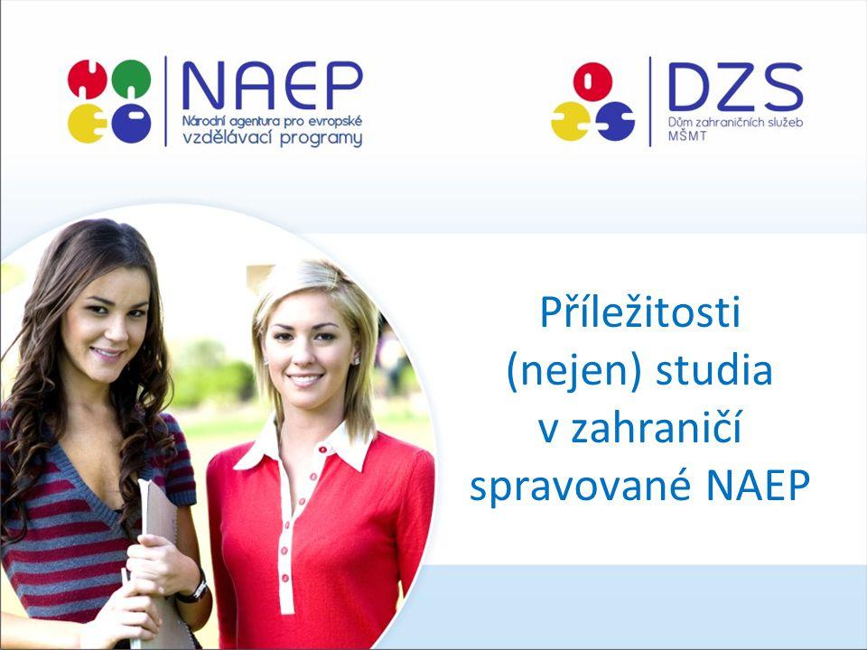 Příležitosti (nejen) studia v zahraničí spravované NAEP