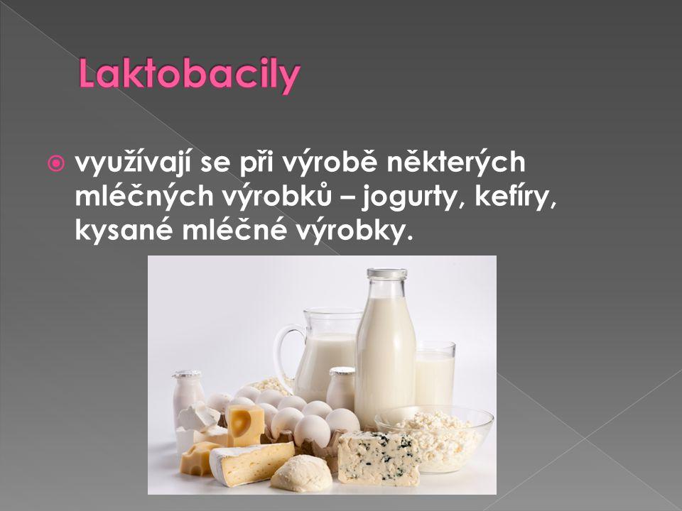  využívají se při výrobě některých mléčných výrobků – jogurty, kefíry, kysané mléčné výrobky.