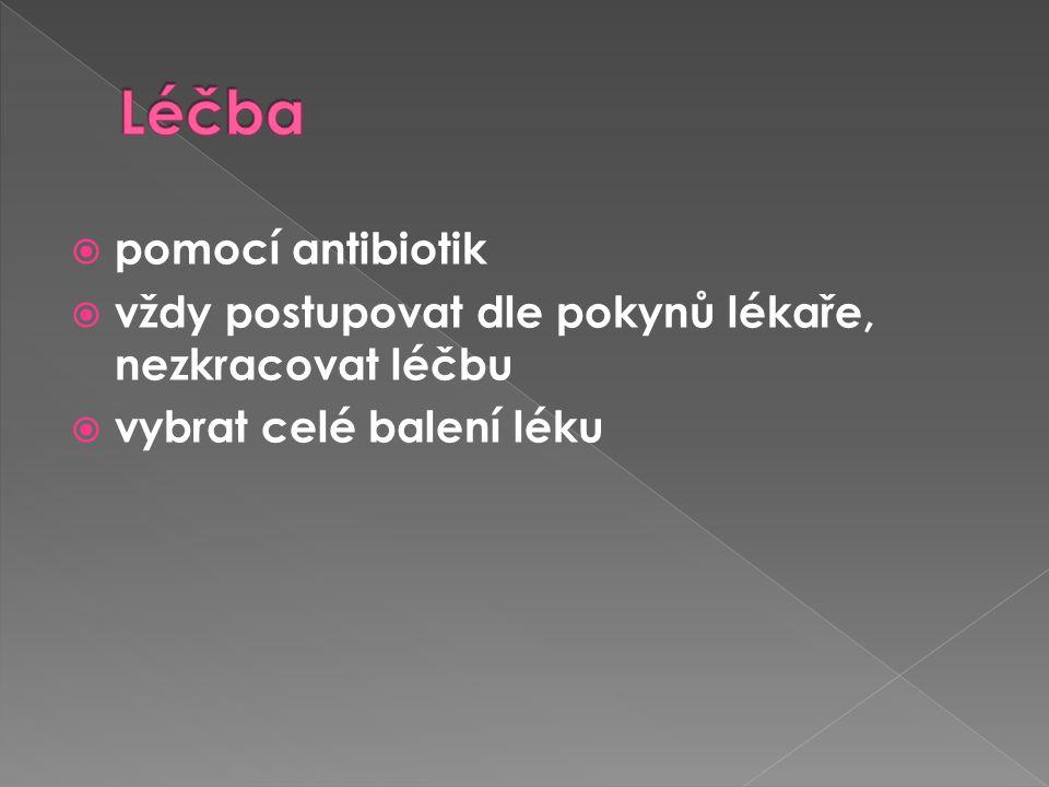  pomocí antibiotik  vždy postupovat dle pokynů lékaře, nezkracovat léčbu  vybrat celé balení léku
