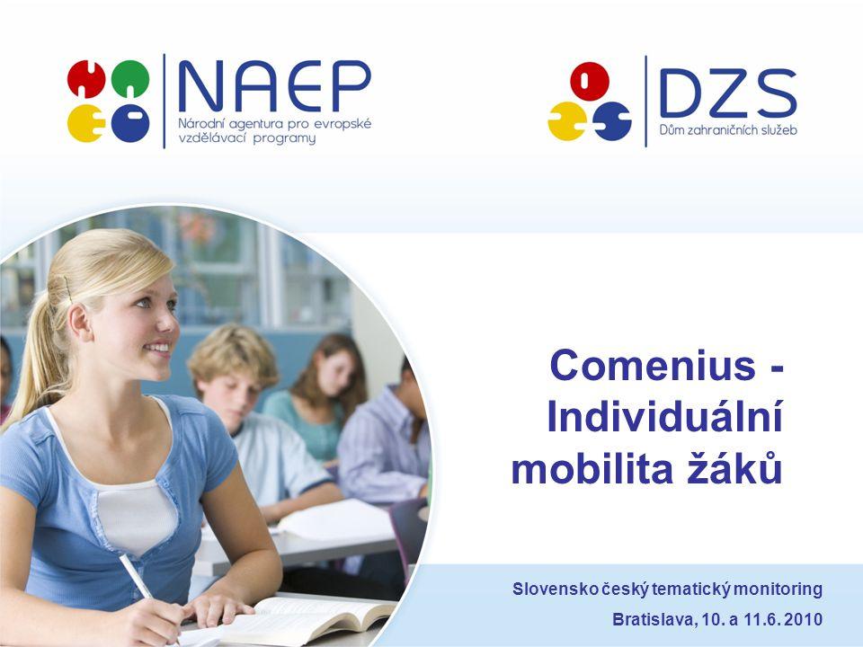 Comenius - Individuální mobilita žáků Slovensko český tematický monitoring Bratislava, 10. a 11.6. 2010