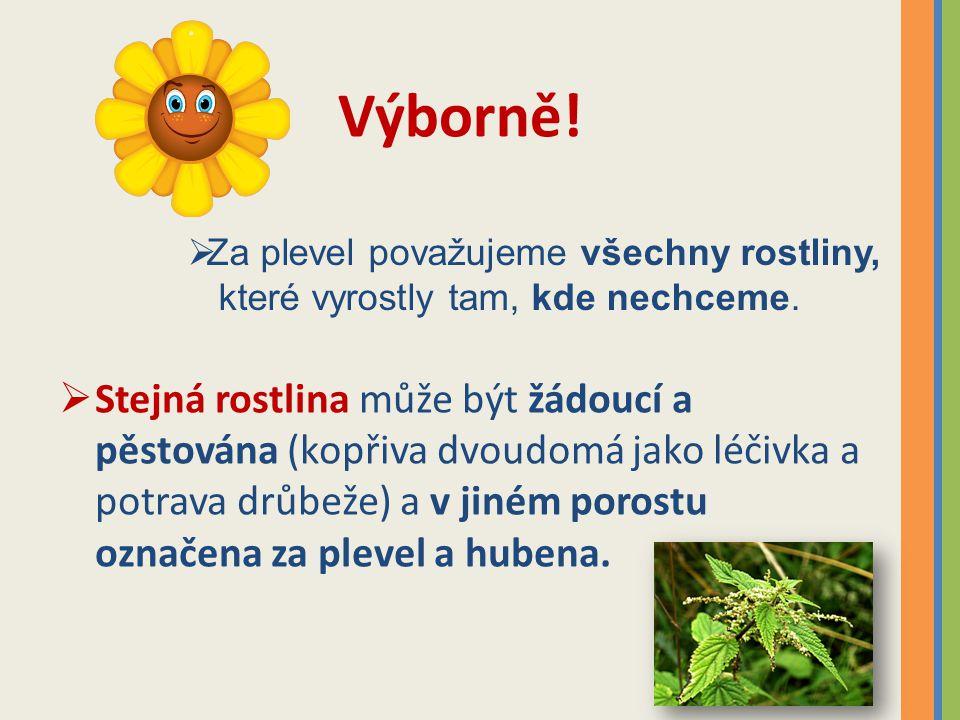 Zápis: Plevel Plevel je rostlina, která roste v kulturním porostu proti vůli pěstitele.