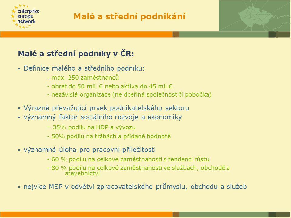 Malé a střední podnikání Malé a střední podniky v ČR:  Definice malého a středního podniku: - max.