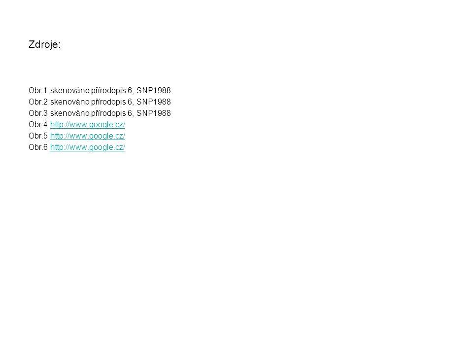 Zdroje: Obr.1 skenováno přírodopis 6, SNP1988 Obr.2 skenováno přírodopis 6, SNP1988 Obr.3 skenováno přírodopis 6, SNP1988 Obr.4 http://www.google.cz/http://www.google.cz/ Obr.5 http://www.google.cz/http://www.google.cz/ Obr.6 http://www.google.cz/http://www.google.cz/