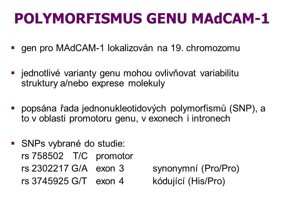 CÍL STUDIE  zhodnotit, zda vybrané jednonukleotidové polymorfismy genu pro MAdCAM-1 jsou rizikovými faktory pro vznik komplikací po alogenní transplantaci kmenových krvetvorných buněk MAdCAM-1 (3 SNP) vznik akutní celkové přežívání nebo chronické GVHD potransplantační úmrtnost (TRM)