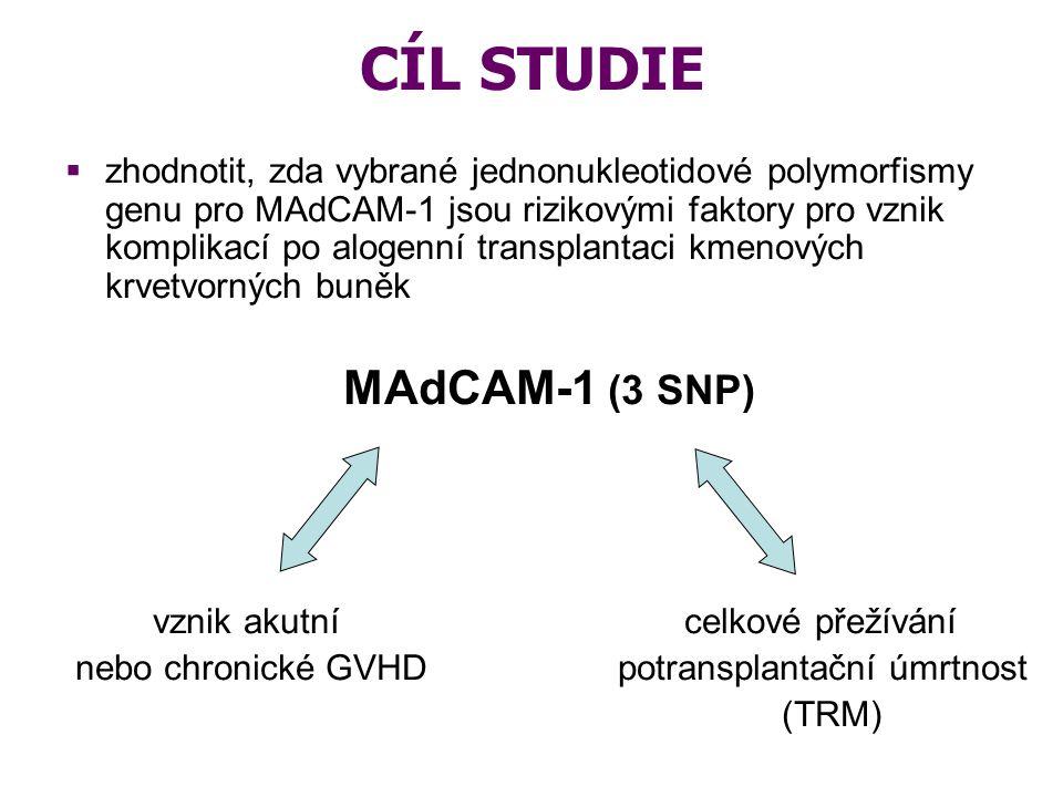 CÍL STUDIE  zhodnotit, zda vybrané jednonukleotidové polymorfismy genu pro MAdCAM-1 jsou rizikovými faktory pro vznik komplikací po alogenní transpla