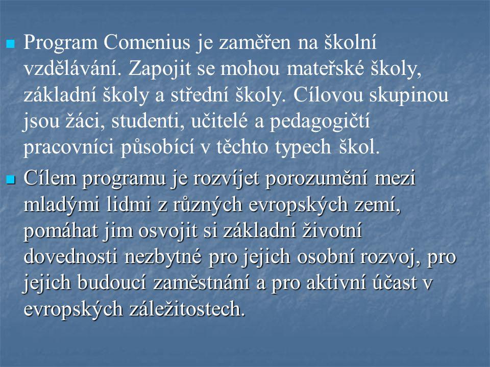 Program Comenius je zaměřen na školní vzdělávání. Zapojit se mohou mateřské školy, základní školy a střední školy. Cílovou skupinou jsou žáci, student