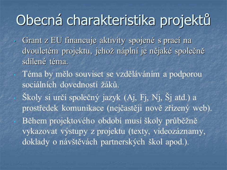 Obecná charakteristika projektů Grant z EU financuje aktivity spojené s prací na dvouletém projektu, jehož náplní je nějaké společně sdílené téma. Tém