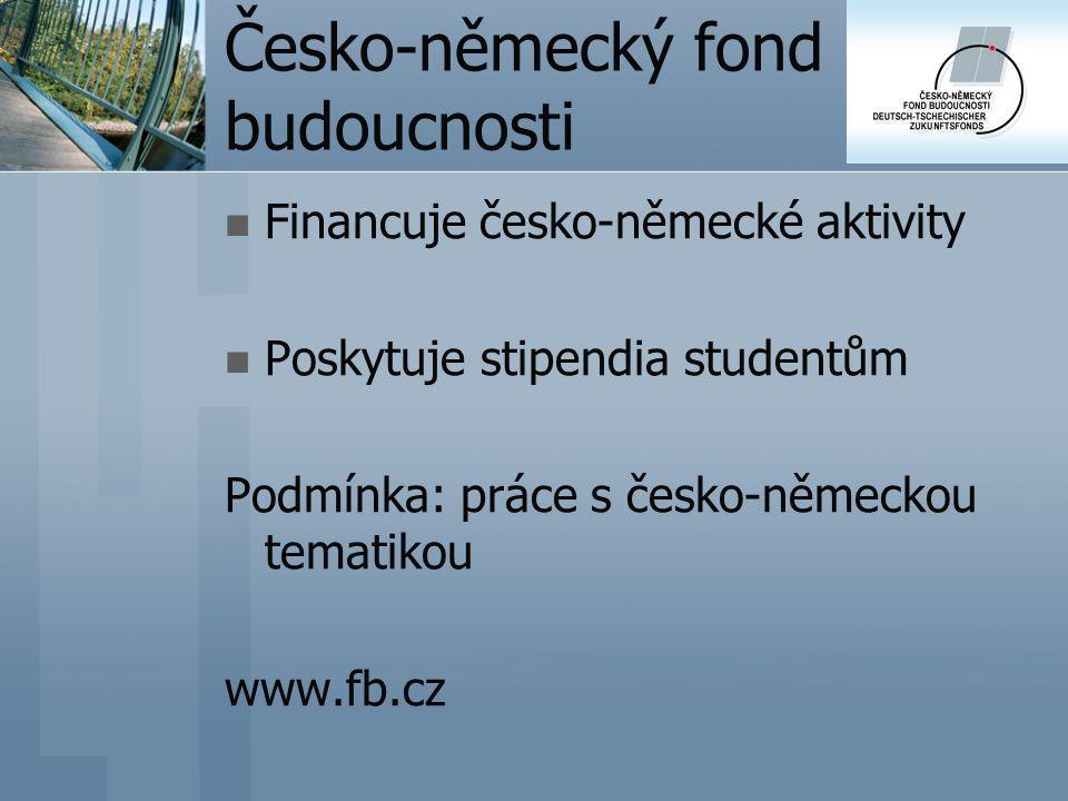 Česko-německý fond budoucnosti Financuje česko-německé aktivity Poskytuje stipendia studentům Podmínka: práce s česko-německou tematikou www.fb.cz