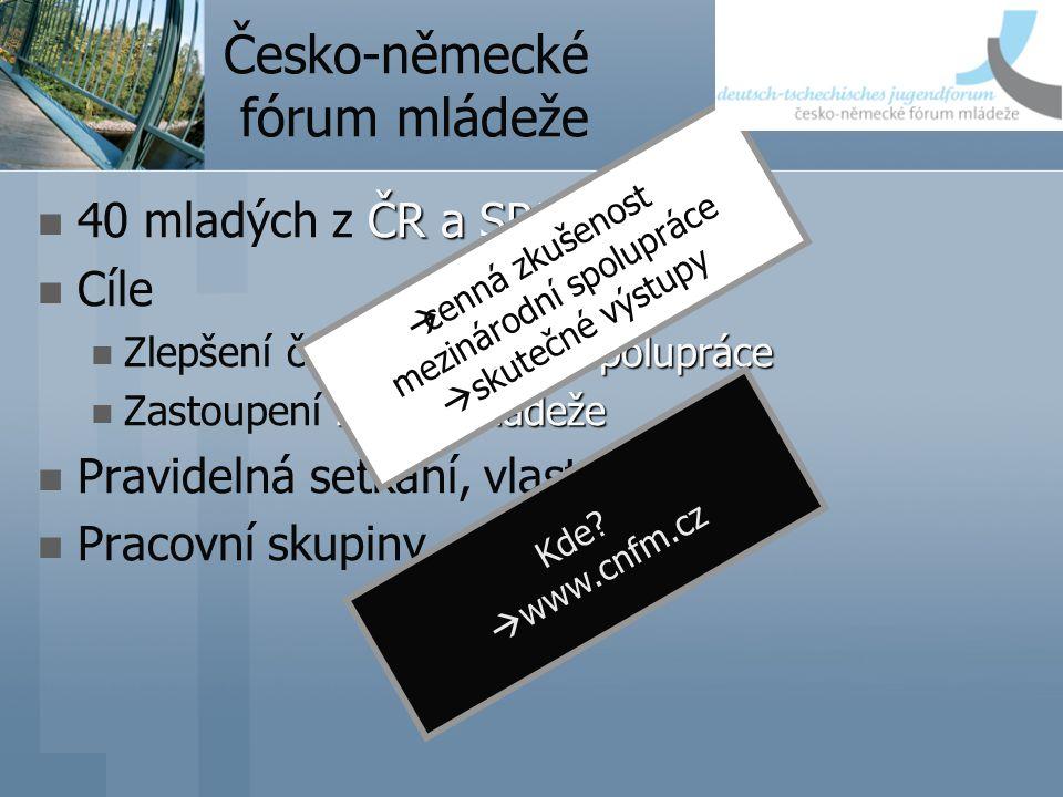 Česko-německé fórum mládeže ČR a SRN 40 mladých z ČR a SRN Cíle spolupráce Zlepšení česko-německé spolupráce zájmů mládeže Zastoupení zájmů mládeže Pravidelná setkání, vlastní projekty Pracovní skupiny Kde.