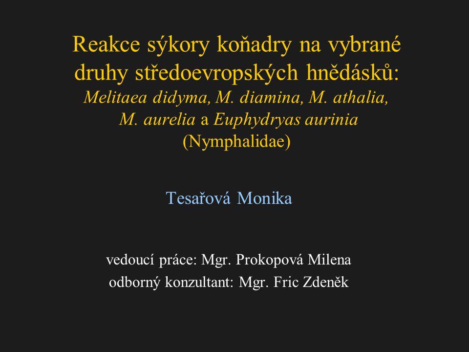 Reakce sýkory koňadry na vybrané druhy středoevropských hnědásků: Melitaea didyma, M.