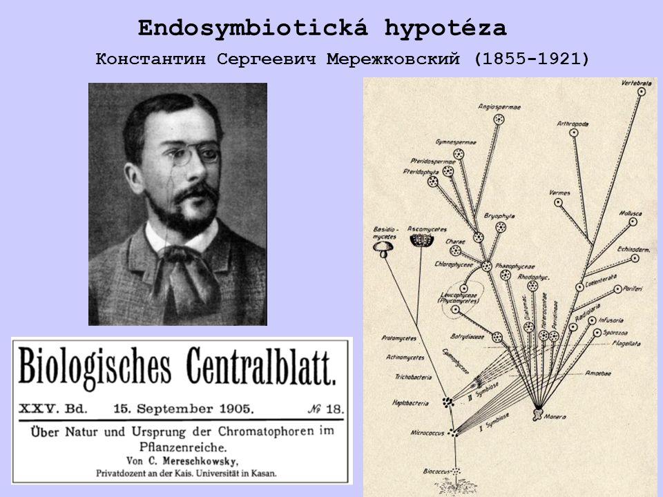 Metabolická komplementarita endosymbiontů kříska Homalodisca coagulata Candidatus Sulcia muelleri (Bacteroidetes) – vertikální dědičnost u křísů (Auchenorrhyncha) pod dobu 260 mil.