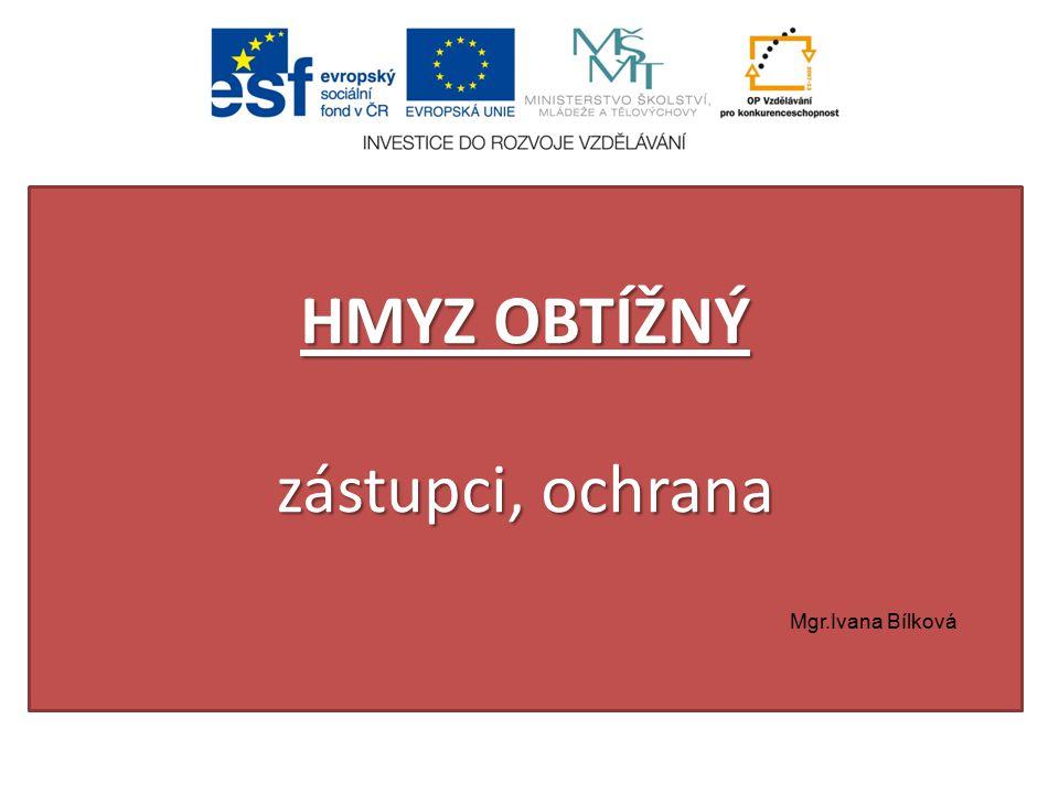 HMYZ OBTÍŽNÝ zástupci, ochrana Mgr.Ivana Bílková