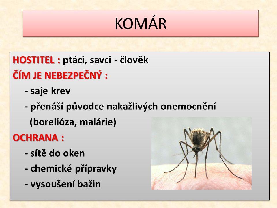 KOMÁR HOSTITEL : HOSTITEL : ptáci, savci - člověk ČÍM JE NEBEZPEČNÝ : - saje krev - přenáší původce nakažlivých onemocnění (borelióza, malárie) OCHRAN