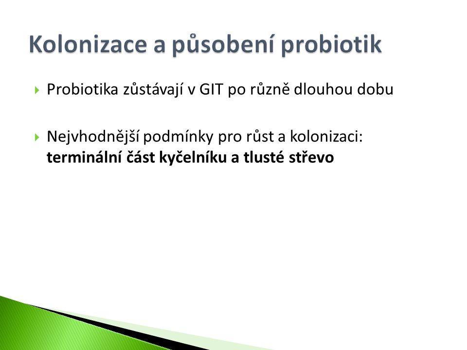  Probiotika zůstávají v GIT po různě dlouhou dobu  Nejvhodnější podmínky pro růst a kolonizaci: terminální část kyčelníku a tlusté střevo