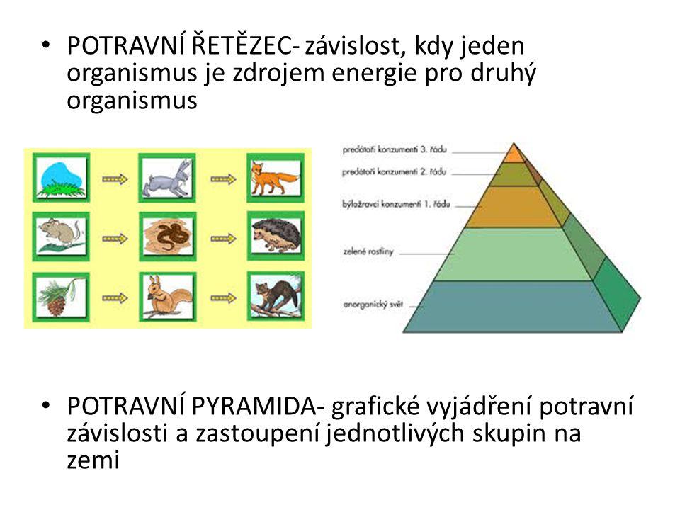 Další vztahy mezi organismy: PREDACE = vztah lovce a kořisti, vztah je prospěšný pro lovce (+, -)