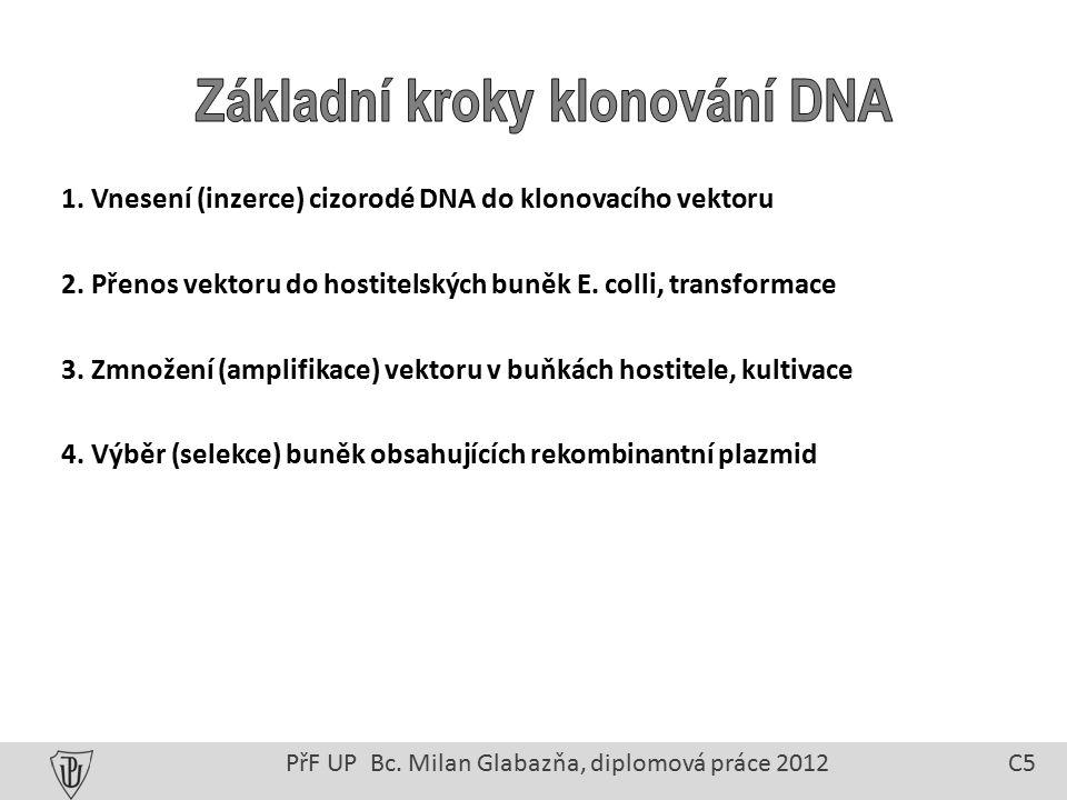 1. Vnesení (inzerce) cizorodé DNA do klonovacího vektoru 2.