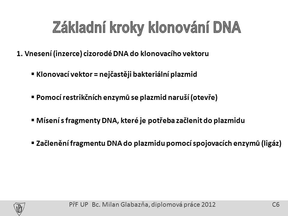 1. Vnesení (inzerce) cizorodé DNA do klonovacího vektoru  Klonovací vektor = nejčastěji bakteriální plazmid  Pomocí restrikčních enzymů se plazmid n