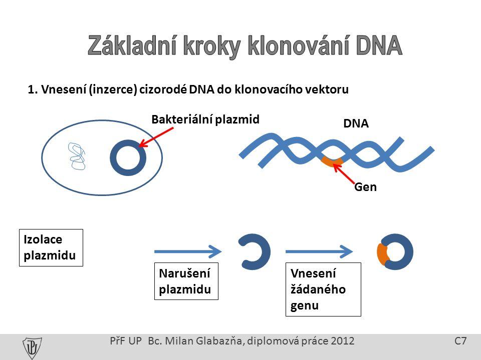 1. Vnesení (inzerce) cizorodé DNA do klonovacího vektoru PřF UP Bc.