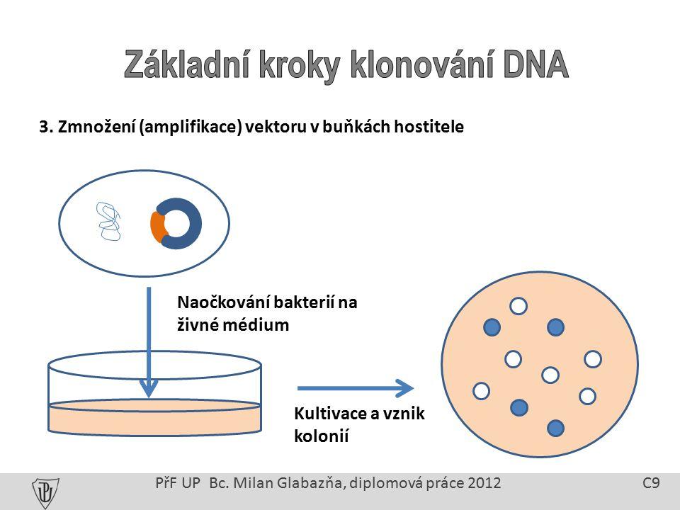 3. Zmnožení (amplifikace) vektoru v buňkách hostitele PřF UP Bc.