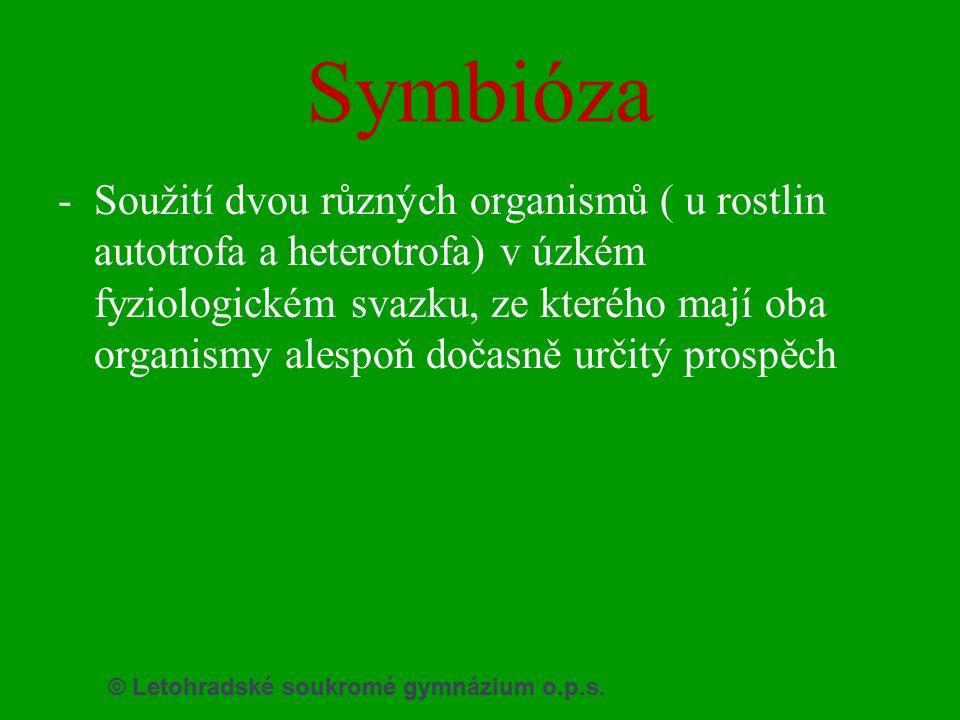 © Letohradské soukromé gymnázium o.p.s. Symbióza -Soužití dvou různých organismů ( u rostlin autotrofa a heterotrofa) v úzkém fyziologickém svazku, ze