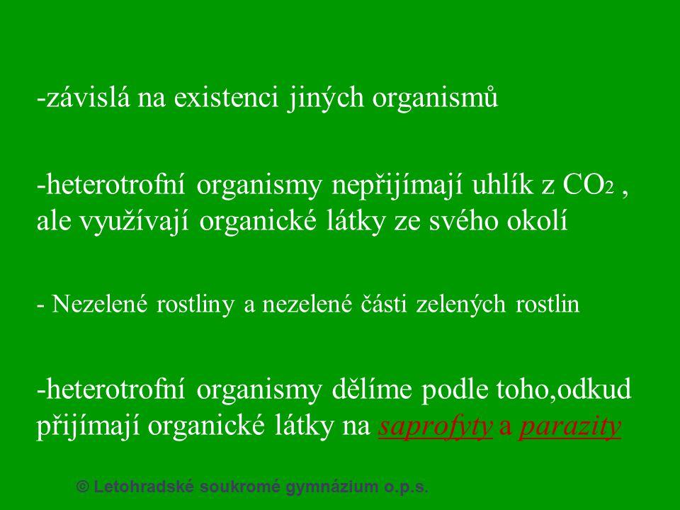 -závislá na existenci jiných organismů -heterotrofní organismy nepřijímají uhlík z CO 2, ale využívají organické látky ze svého okolí - Nezelené rostl