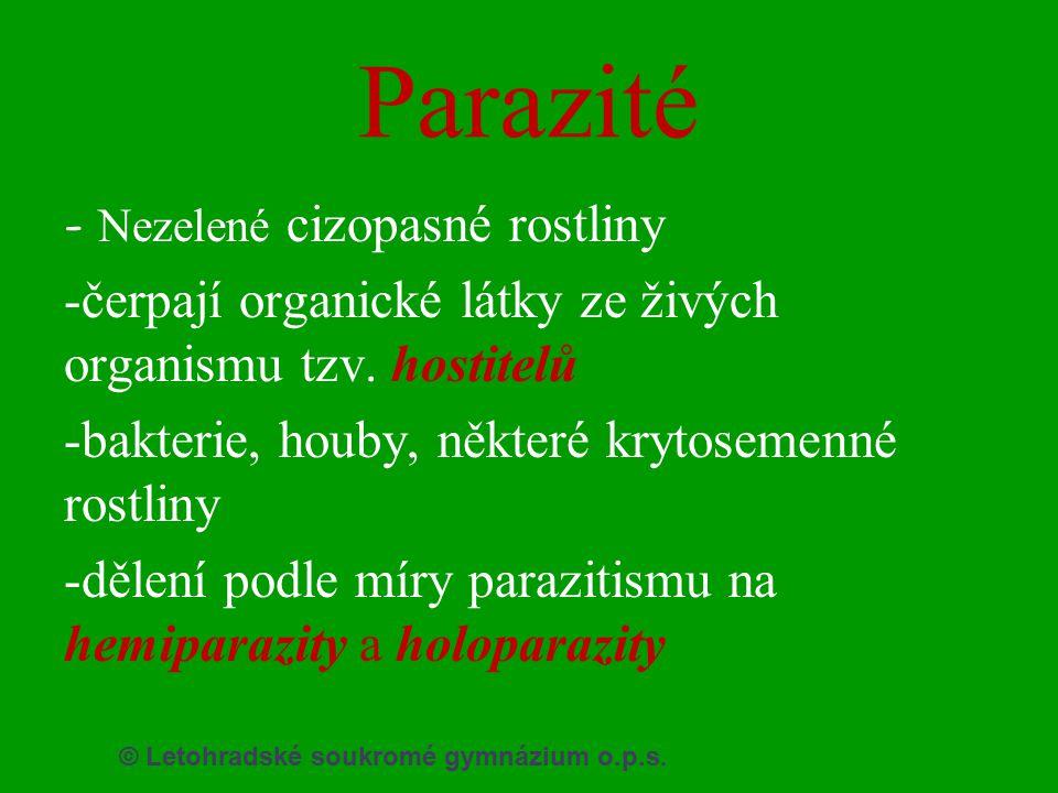 © Letohradské soukromé gymnázium o.p.s. Parazité - Nezelené cizopasné rostliny -čerpají organické látky ze živých organismu tzv. hostitelů -bakterie,